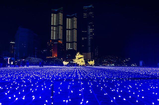 2019年12月海雲台(ヘウンデ)光祭り 画像