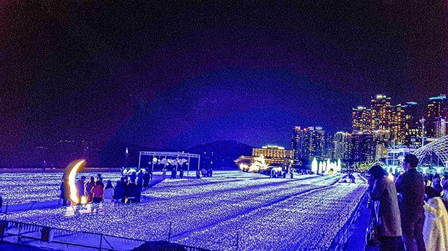 2019年12月ガーデンライトショー 画像