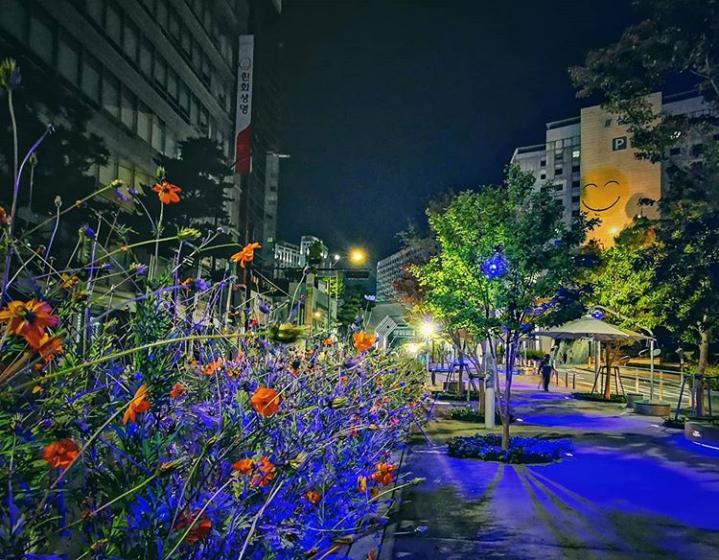 カップルで韓国旅行におすすめのデートスポット「서울로7017(ソウル路7017/ソウルロ7017)」の画像4