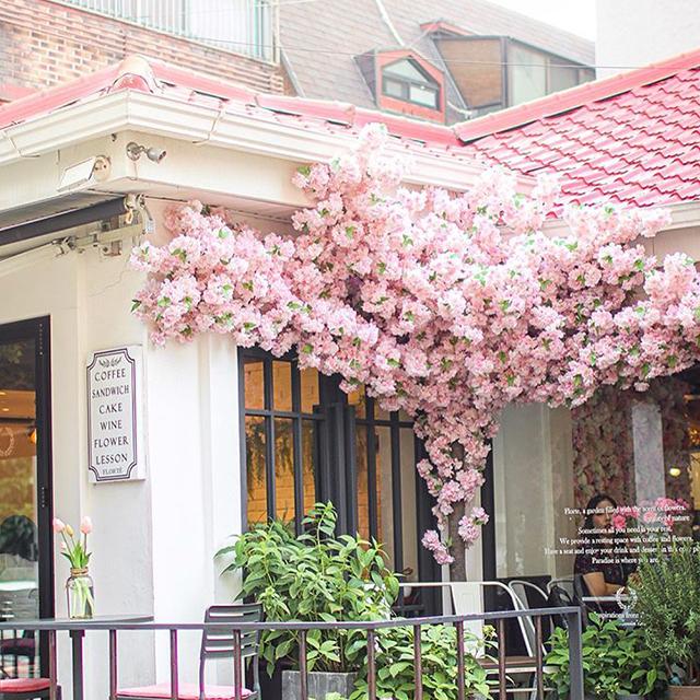 春にぴったりなソウルのフラワーカフェに行ってみよう!