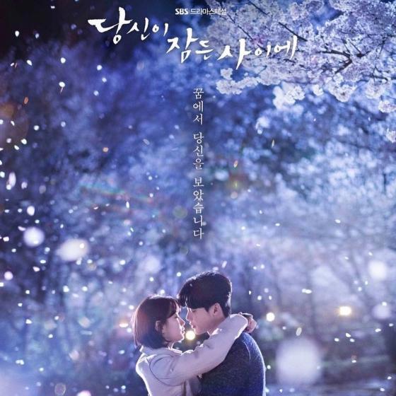 U-NEXT(ユーネクスト)韓国人気ドラマ7位「あなたが眠っている間に」(2017年)の画像