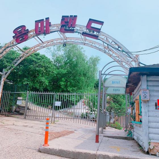 ソウルのおすすめ観光スポット「龍馬ランド(ヨンマレンドゥ)」の画像2