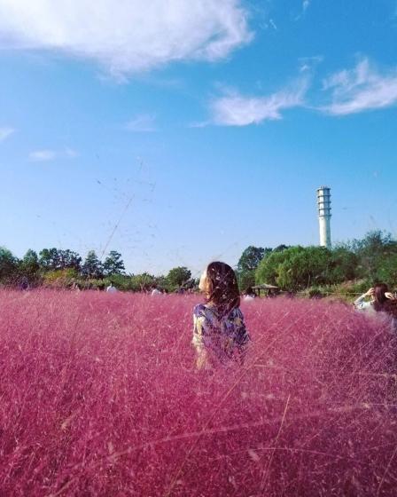 ソウルのおすすめ観光スポット「ハヌル公園(ハヌルコンウォン)」の画像3
